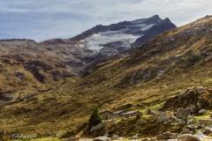 Alpe Mottala in Val di Lei
