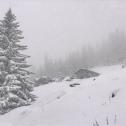 Alpe Monte Alto